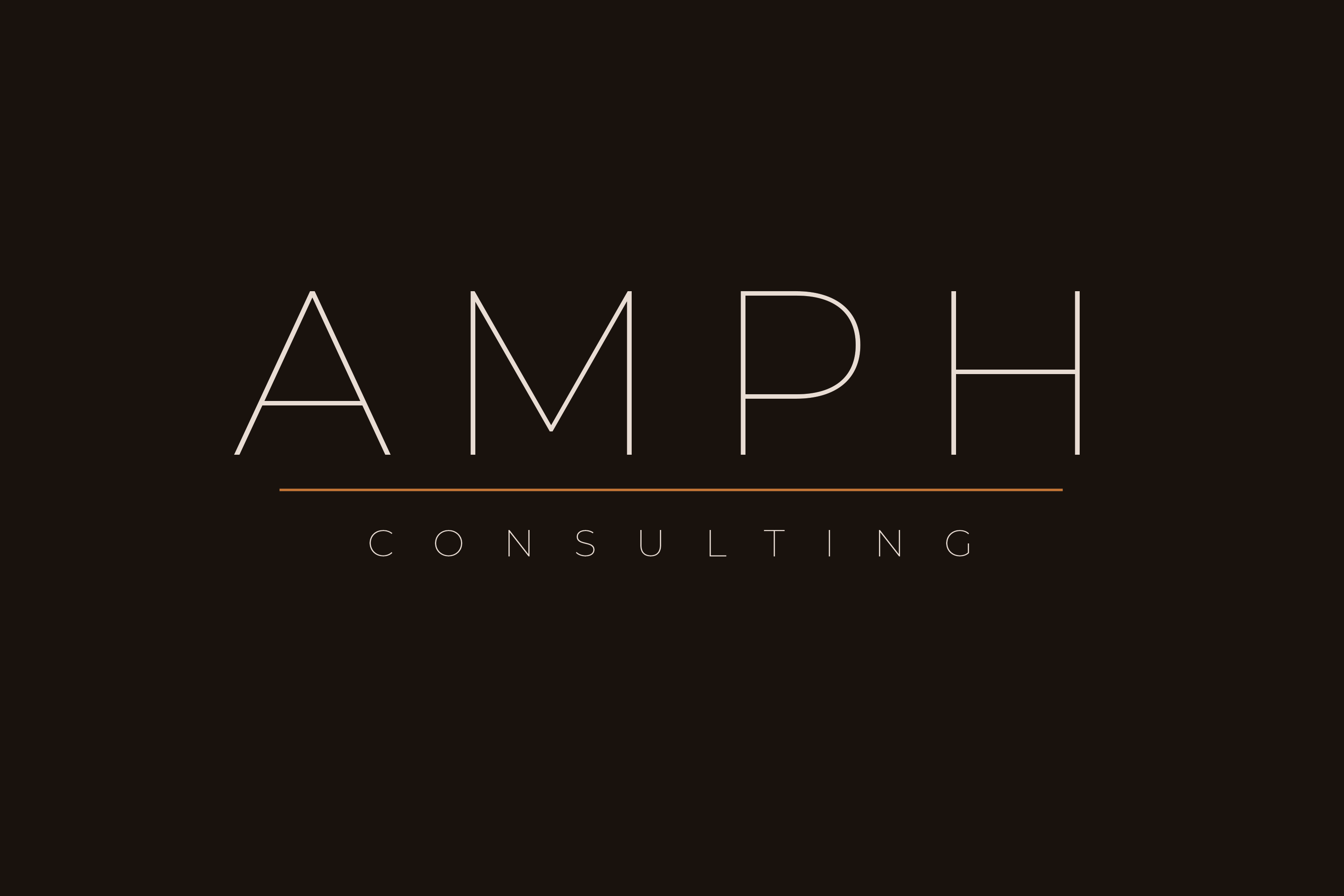 What We Do | Services | Business Consulting | AMPH Consulting Limited